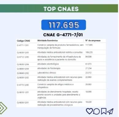 Imagem com o top 10 Cnaes