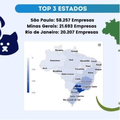 Imagem com o top 10 Cnaes por Estado do Brasil